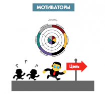 сертификация TTI Success Insights DISC Motivators